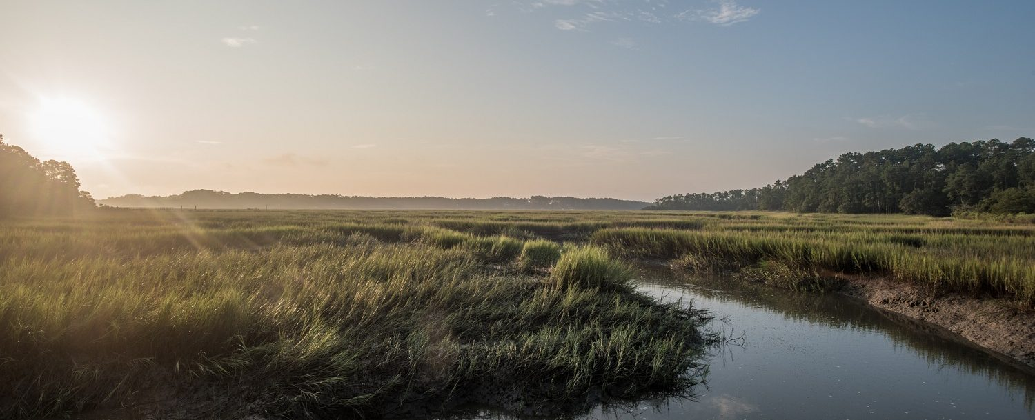 Discover our favorite things to do on Kiawah Island.