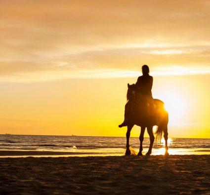 Seabrook Equestrian Center horseback riding on the beach at sunset